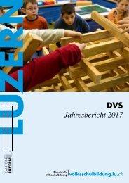 DVS-Jahresbericht 2017