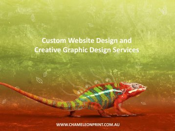 Custom Website Design and Creative Graphic Design Services