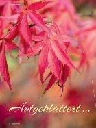Lebenswert Herbst 2017 - Page 6