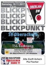 SVO Blickpunkt-Ausgabe-08 TSG Backnang