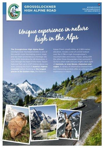 Panoramic Roads Austria
