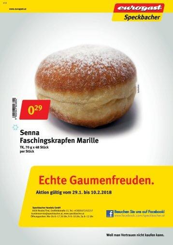 Flugblatt Eurogast Speckbacher