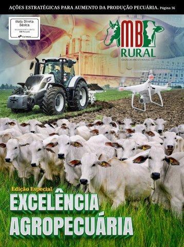 Revista MB Rural Ed 34