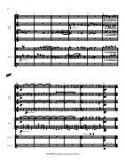 Rosner - Fantasia quasi una Toccata, op. 31 - Page 5