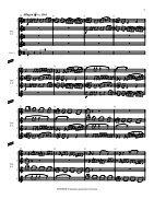 Rosner - Fantasia quasi una Toccata, op. 31 - Page 6