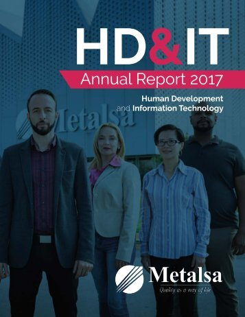 Metalsa Annual Report 2017