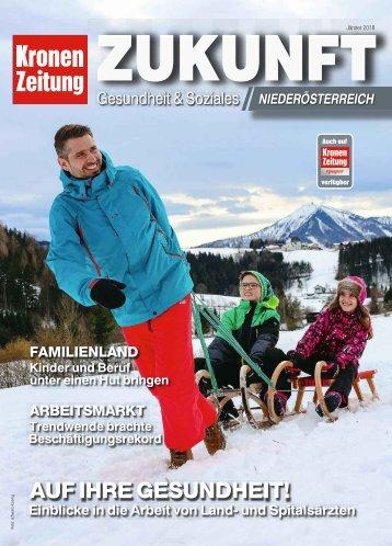 Zukunft Niederösterreich_2018-01-27