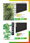 Top-100-Strains-2018-Cannabis-Seed-Guide - Page 7