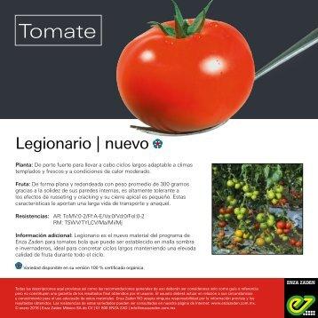 Leaflet Legionario 2018