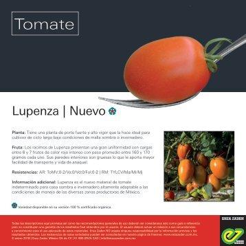 Leaflet Lupenza 2018