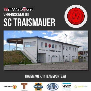 Online Traismauer