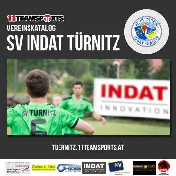 Online Türnitz