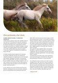 Agrodieren.be equipement d'équitation, equipement pour le cheval et le cavalier et le cheval stable catalog 2018 - Page 2
