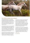 Agrodieren.be equestrian sport horse equipment equestrian equipment stable equipment catalog 2018 - Page 2
