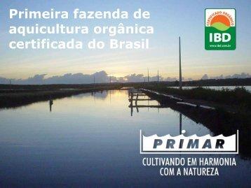 Primar_2018_institucional_9_bq