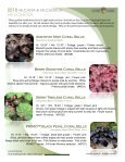 2018 Heuchera - Acorn Farms - Page 3
