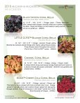 2018 Heuchera - Acorn Farms - Page 4