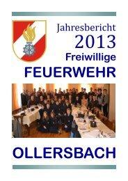 Jahresbericht_2013