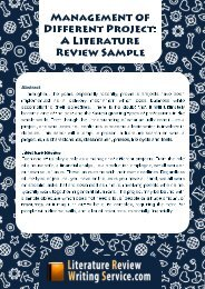 Business Literature Review Example Sample