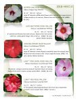 2018 Hibiscus - Acorn Farms - Page 4