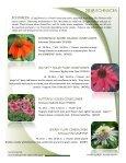 2018 Echinacea - Acorn Farms - Page 4