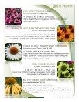 2018 Echinacea - Acorn Farms - Page 7