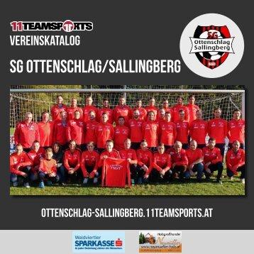 Online Sallingberg