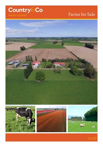 48631 Country & Co - NZ Realtors- 2018 Low Res