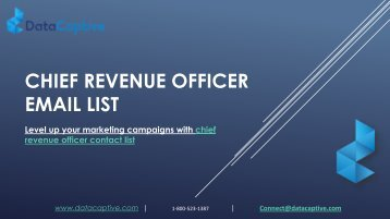 Chief Revenue officer Email List