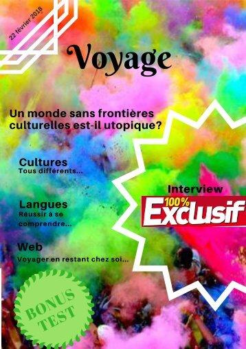 1 Voyage