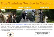 Dog Training Service In Marlton