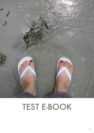 NGG_Test_ebook