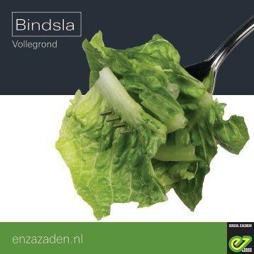 Leaflet Bindsla 2018
