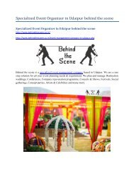 Specialized Event Organizer in Udaipur behind the scene