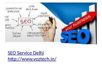 Best SEO Service Delhi