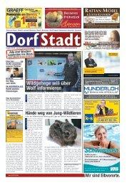 DorfStadt 03-2018