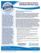 2018 Brain Injury Association of America Legislative Issue Briefs - Page 2