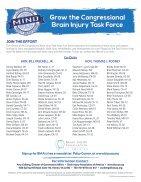 2018 Brain Injury Association of America Legislative Issue Briefs - Page 6