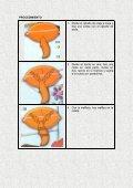 Peinados Para Niñas - Page 5