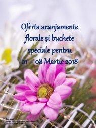 Oferta-01-08-Martie