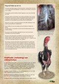 TuinVee Tijdschriftje 1 - Page 6