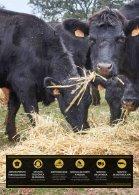 makro catálogo de carnes cataluña del 1 de marzo al 30 de abril 2018 - Page 2