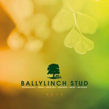 BallylinchBrochure2018