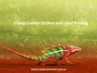 Cheap Custom Stickers and Label Printing - Chameleon Print Group