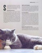Alles für mein Tier 02/18 - Page 7