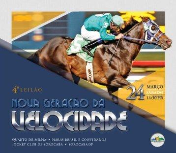 CATALOGO-NGVELOCIDADE