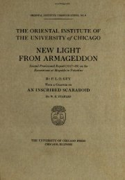 NEW LIGHT FROM ARMAGEDDON - Oriental Institute - University of ...