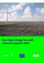 U New high voltage line with reduced magnetic field - Netzausbau in ...