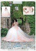 #628 Mis XV Primaveras Quince años vestidos para fiesta y accesorios al por mayor - Page 3