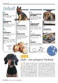 Plätzchen - das Kundenmagazin von dog & dino, Ausgabe 1, 2018 - Seite 2